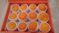 送料無料!魔法の食感、高級柑橘!【紅まどんな】中玉